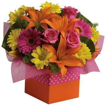 Image of Starburst Splash - Flower Arrangement